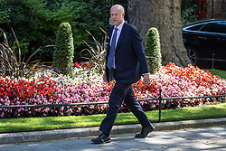 London, UK. 23 July, 2019. Chris Grayling MP, Secretary of State for Transport, arrives at 10 Downing Street for the final Cabinet meeting of Theresa May's Premiership. The name of the new Conservative Party Leader, and so the new Prime Minister, will be announced at a special event following the meeting.
