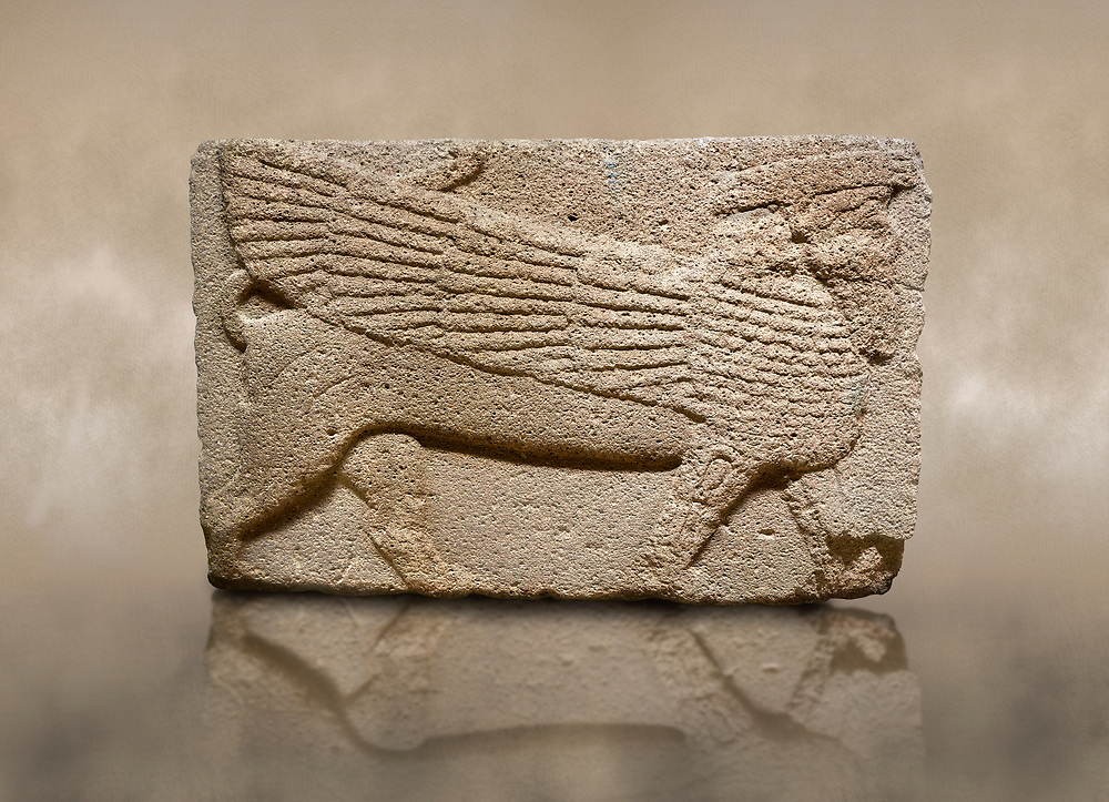 Photo of Phrygian relief sculpted orthostat stone panel. Andesite, Ahiyakup, Ankara Phrygian, 1200-700 B.C. Anatolian Civilisations Museum, Ankara, Turkey.<br /> <br /> Sphinx. Curly-haired and bearded, the figure has the head of a human and the body of a lion, with its wings extending down to its tail. Muscles in its legs are schematic. There is a band on its head. <br /> <br /> Against a brown art background. .<br /> <br /> If you prefer you can also buy from our ALAMY PHOTO LIBRARY  Collection visit : https://www.alamy.com/portfolio/paul-williams-funkystock/phrygian-antiquities.html  - Type into the LOWER SEARCH WITHIN GALLERY box to refine search by adding background colour, place, museum etc<br /> <br /> Visit our CLASSICAL WORLD PHOTO COLLECTIONS for more photos to download or buy as wall art prints https://funkystock.photoshelter.com/gallery-collection/Classical-Era-Historic-Sites-Archaeological-Sites-Pictures-Images/C0000g4bSGiDL9rw