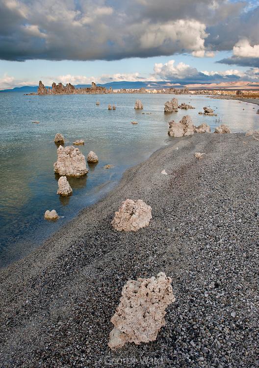 Tufa and Shoreline in Afternoon, Mono Lake, Mono Basin National Forest Scenic Area, California