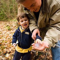 A young boy and his father hold salamander eggs from a vernal pool near Gulf Brook Ravine in Pepperell, MA.