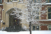 New snow falls on University of Regina, College Avenue Campus, Regina