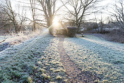© Licensed to London News Pictures. 27/12/2016. Horsham, West Sussex, UK.  The sun shines through frost covered grass in Horsham, West Sussex. Parts of the south of England have woken to frost and freezing weather this morning.  Photo credit: Vickie Flores/LNP