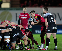 Scarlets' Gareth Davies waits to put in at the scrum<br /> <br /> Photographer Simon King/Replay Images<br /> <br /> European Rugby Champions Cup Round 6 - Scarlets v Toulon - Saturday 20th January 2018 - Parc Y Scarlets - Llanelli<br /> <br /> World Copyright © Replay Images . All rights reserved. info@replayimages.co.uk - http://replayimages.co.uk