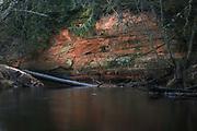 Sandstone cliff Pursalu iezis along river Iģe on snowless late winter day, North Vidzeme Biosphere Reserve (Ziemeļvidzemes biosfēras rezervāts), Latvia Ⓒ Davis Ulands | davisulands.com