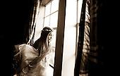 Melody & Cary - Wedding Photos