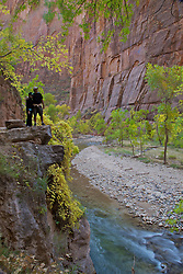 Hikers taking in the view of the Virgin River Valley in Zion National Park on a beautiful autumn day