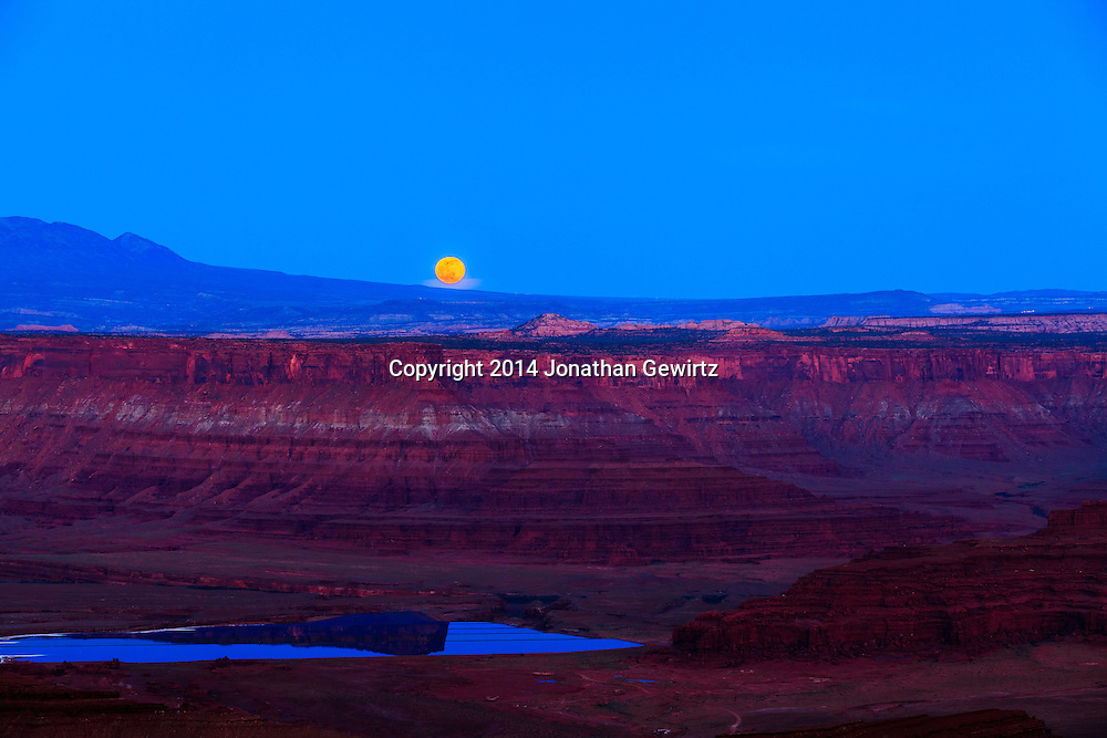 The full moon rises behind the La Sal mountains, over red rock cliffs in the Colorado River Plateau as seen from Dead Horse Point State Park near Moab, Utah.<br /> <br /> WATERMARKS WILL NOT APPEAR ON PRINTS OR LICENSED IMAGES.<br /> <br /> Licensing: https://tandemstock.com/assets/80352585
