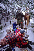 USA, MAINE, BLUE HILL: Birdsall Horse Logger Farm: Sleigh ride through snowy woods