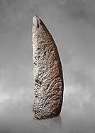 Late European Neolithic prehistoric Menhir standing stone with carvings on its face side. The representation of a stylalised male figure starts at the top with a long nose from which 2 eyebrows arch around the top of the stone. below this is a carving of a falling figure with head at the bottom and 2 curved arms encircling a body above. at the bottom is a carving of a dagger running horizontally across the menhir. Excavated from Perida Iddocca VII site,  Laconi.  Menhir Museum, Museo della Statuaria Prehistorica in Sardegna, Museum of Prehoistoric Sardinian Statues, Palazzo Aymerich, Laconi, Sardinia, Italy .<br /> <br /> Visit our PREHISTORIC PLACES PHOTO COLLECTIONS for more photos to download or buy as prints https://funkystock.photoshelter.com/gallery-collection/Prehistoric-Neolithic-Sites-Art-Artefacts-Pictures-Photos/C0000tfxw63zrUT4