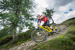 Mountain biker riding down hill on forest path, Trentino-Alto Adige, Italy
