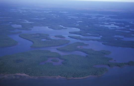 Everglades National Park, Aerial view of park. Florida.