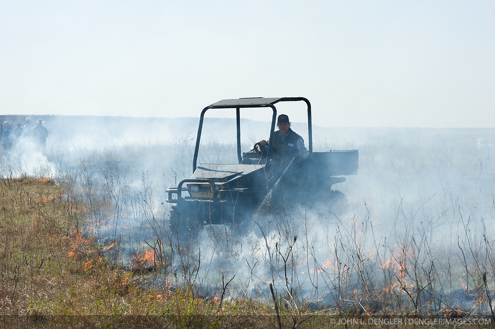 """Gwen Hoy, owner of the Flying W Ranch near Clements, Kansas controls the burning of ranch prairie during the """"Flames in the Flint Hills."""" This agritourism event allows ranch guests to take part in lighting the prescribed burns. Prairie grasses in the Kansas Flint Hills are intentionally burned by land mangers and cattle ranchers in the spring to prepare the land for cattle grazing and help maintain a healthy tallgrass prairie ecosystem. The burning is also an effective way of controlling invasive plants and trees. The prairie grassland is burned when the soil is moist but grasses are dry. This allows the deep roots of the grasses to survive and the burned grasses on the soil surface return as nutrients to the soil. These nutrients allow for the rapid growth of new grass. After approximately two weeks of burning, new grass emerges. Less than four percent of the original 140 million acres of tallgrass prairie remains in North America. Most of the remaining tallgrass prairie is in the Flint Hills in Kansas."""