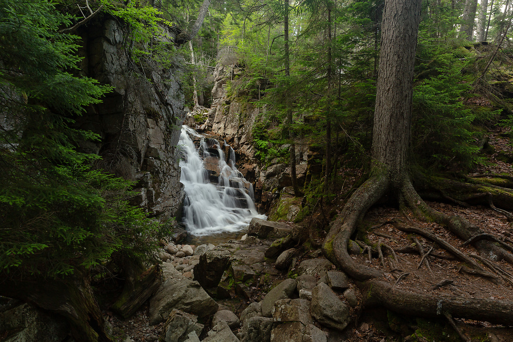 The cascading ledge of Cloudland Falls seen though the vibrant summer forest of Franconia Notch on a warm summer afternoon.