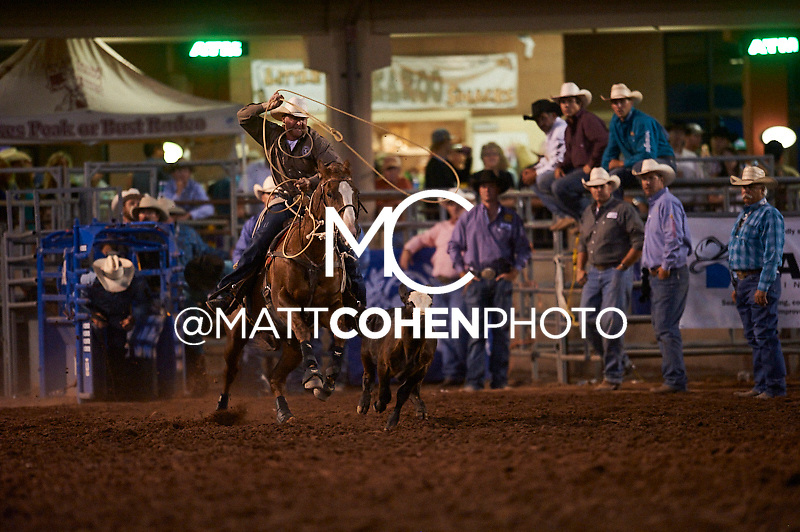 Tie-down roper Trent Creager of Stillwater, OK competes at the Pikes Peak or Bust Rodeo in Colorado Springs, CO.<br /> <br /> <br /> UNEDITED LOW-RES PREVIEW<br /> <br /> <br /> File shown may be an unedited low resolution version used as a proof only. All prints are 100% guaranteed for quality. Sizes 8x10+ come with a version for personal social media. I am currently not selling downloads for commercial/brand use.