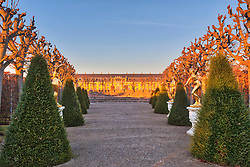 Cone-shaped trees with golden statues at Herrenhausen garden