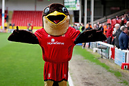 Swifty the Walsall mascot before the EFL Sky Bet League 1 match between Walsall and Barnsley at the Banks's Stadium, Walsall, England on 23 March 2019.