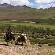 Nomad people that live in areas near Lake Namtso. Altitudes above 17,000 feet. Tibet. Asia.