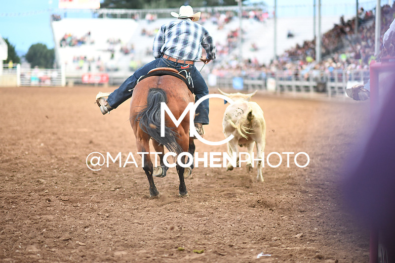 Trever Knighton, Nephi 2018<br /> <br /> <br /> UNEDITED LOW-RES PREVIEW<br /> <br /> File shown may be an unedited low resolution version used as a proof only. All prints are 100% guaranteed for quality. Sizes 8x10+ come with a version for personal social media. I am currently not selling downloads for commercial/brand use.