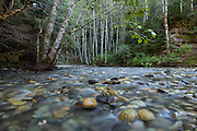Water runs over rounded rocks in the Nooksack River, Mount Baker-Snoqualmie National Forest, Washington.