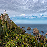 """According to """"Wikipedia"""" - Nugget Point is one of the most iconic landforms on the Otago coast. Located at the northern end of the Catlins coast down the road from Kaka Point, this steep headland has a lighthouse at its tip, surrounded by rocky islets (The Nuggets). The point is home to many seabirds, including penguins, gannets and spoonbills, and a large breeding colony of fur seals."""