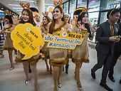 New Terminal Opens at Don Muang Airport
