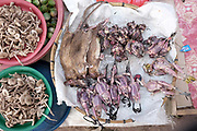 Mushrooms, rats and birds for sale at Don Makai evening market in the outskirts of Vientiane, Lao PDR. A large variety of local products are available for sale in fresh markets all over Laos, all being sold on small individual stalls.