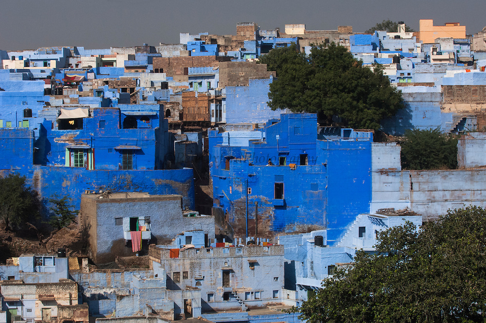'Blue City'  Jodhpur. Rajasthan, INDIA<br /> The Kingdom of Jodhpur was established in the 12th century but in the 15th century the fort and city walls were constructed and they still stand today. Jodhpur is the second largest city in Rajasthan with a population of 1.3 million. Jodhpur may be called the 'Blue City' from the characteristic pale indigo colour of its traditional homes. Originally the color signified the home of the Jodhpuri Brahmin but the copper sulphate in the paint seems to ward off termites and mosquitos so many people then followed the traditional of painting their homes blue. The very narrow streets are filled with colourful bazaars where merchants are selling their wares.