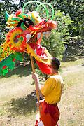 Dance team member holding head of dragon for ceremony. Dragon Festival Lake Phalen Park St Paul Minnesota USA