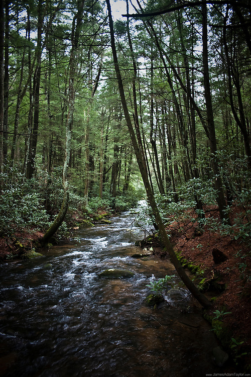 One of many stream crossings along the southern portion os the Appalachian Trail/