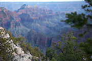 North Rim of the Grand Canyon, AZ