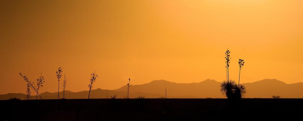 Somewhere south of Willcox, Arizona.