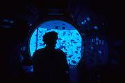 Atlantis Submarine<br />