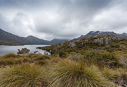 Button grass lines the Dove Lake circuit walking track, with snow on the peaks in winter.
