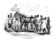 Caveat Emptor horse auction From the book ' London and its environs : a practical guide to the metropolis and its vicinity, illustrated by maps, plans and views ' by Adam and Charles Black Published in Edinburgh by A. & C. Black 1862