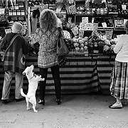 People and Street Photography in Black and White<br /> <br /> HOW TO LICENCE THIS PICTURE: please contact us via e-mail at sales@xianpix.com or call London +44 (0)207 1939846 for prices and terms of copyright. First Use Only ,Editorial Use Only, All repros payable, No Archiving.<br /> © MARCO SECCHI