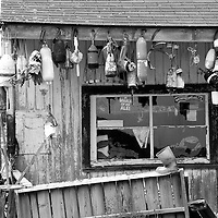 Lobster bouys and markers hang out to dry in front of lobster fisherman storage shack in ChristmasCove, Maine