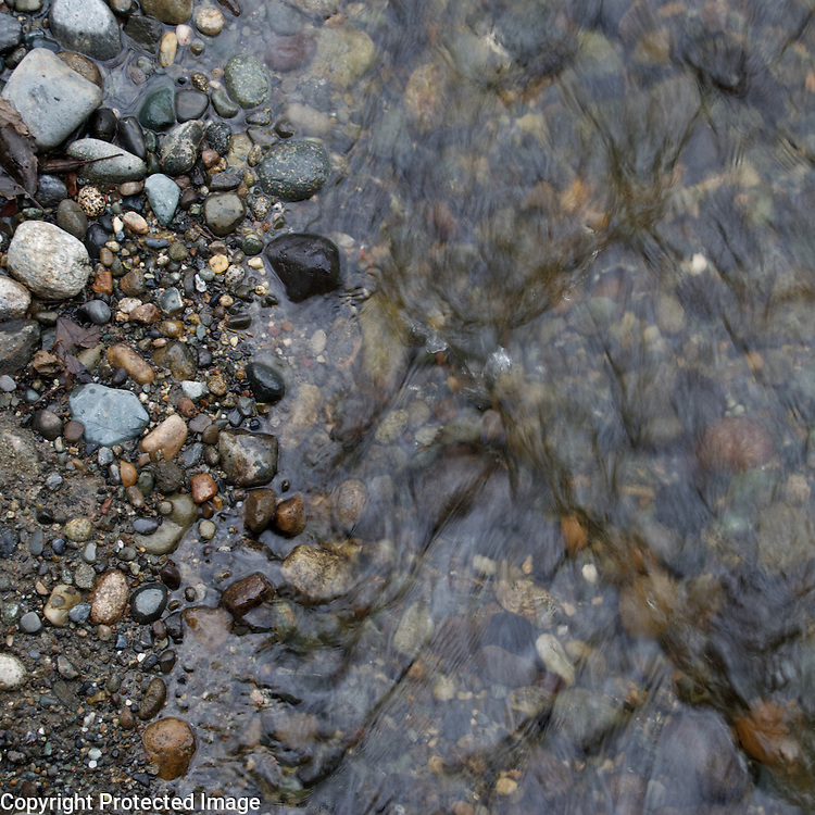 """One of my weekly """"chores"""" is to take our dog to a park on the shore of the Sound near our house. This stream runs through it, and it's always a good place for a drink after a hard run. I love my chores."""