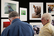 Milpitas Camera Club member Dave Herzstein (left) and wife Diane enjoy the images from other club members during opening night of the 10th Anniversary Print Show at the Milpitas Community Center's Phantom Art Gallery on July 23, 2012.  Photo by Stan Olszewski/SOSKIphoto.com.