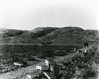 1903 Field in Hollywood