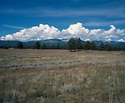 Serene landscape of the Valle Vidal, New Mexico.