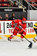 Photography of Charlotte Checkers 2019