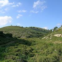 Galilee-Lower West