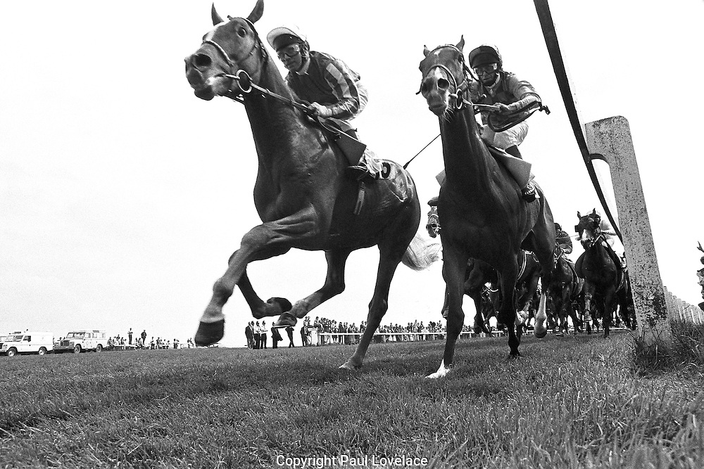 Derby Day Race, UK. This was shot on black & white film and using a remote .cable. . An instant sale option is available where a price can be agreed on image useage size. Please contact me if this option is preferred.