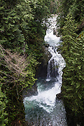 See waterfalls in Lynn Canyon from the Suspension Bridge, in North Vancouver. Lynn Canyon is a municipal park established in 1912 at 3663 Park Road, in North Vancouver, British Columbia, V7J 3G3, Canada. Phone 604-990-3755.