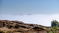 Frost & Fog at Headon Warren on the Isle of Wight, looking across to the Tennyson Monument.