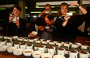 A team of English tea-tasters employed by the tea company Lyons sample different blends for the PG Tips brand in the City of London, England UK. With variously-sourced teas from tea estate plantations, they smell, touch, sip, slurp then spit the hot drink out into a spittoon rather than swallow it many times repeatedly. Britons drink 35 million cups of PG Tips a day and world tea production is approximately 3.2 million tonnes a year. Kenya is the largest producer with Sri Lanka a close second. PG Tips is imported as single estate teas from around the world and blended in precise proportions set by the tea tasters to make blend 777, which can contain between 12 and 35 single estate teas at any one time depending on season.