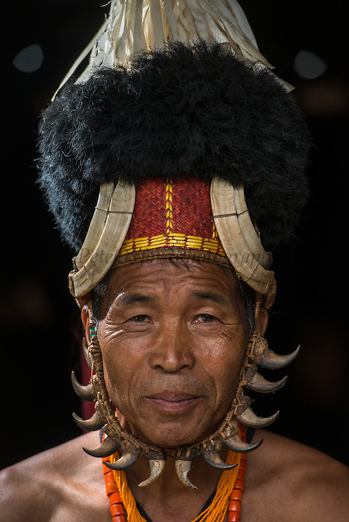 Chang Naga in festival dress. Tiger claws around his face. Hornbill feathers on hat, Ivory armband, wild boar tusks on hat<br /> Chang Naga headhunting Tribe<br /> Tuensang district<br /> Nagaland,  ne India