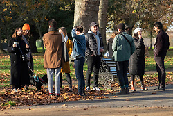 © Licensed to London News Pictures. 22/11/2020. London, UK. Visitors enjoy the sunshine on a Sunday afternoon in Hyde Park during the second Covid-19 lockdown. Photo credit: London News Pictures