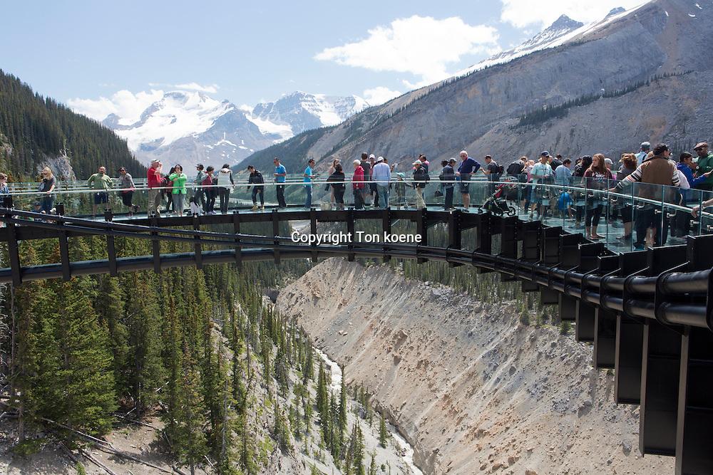 Glacier Skywalk at jasper national park, Canada