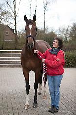 Hendriksen Dressuurpaarden 2016